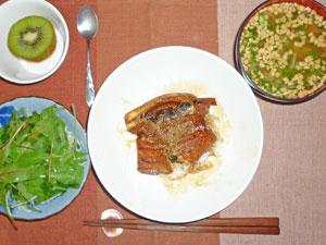 鰻丼,サラダ,もやしの納豆汁,キウイフルーツ