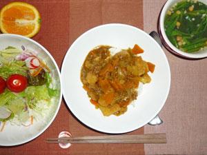 カレーライス,サラダ,ほうれん草のスープ,オレンジ