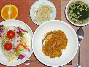 カレーライス,サラダ,ワカメスープ,もやしのおひたし,オレンジ