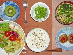ゴマ塩のふりかけご飯,サラダ,プチバーグ,ほうれん草の納豆汁,枝豆,キウイフルーツ