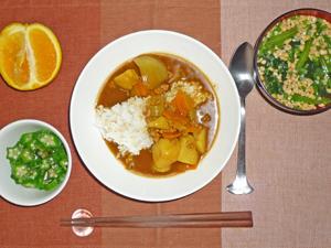 カレーライス,オクラのお浸し,納豆汁,オレンジ