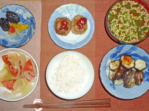 ご飯,トマトと玉ねぎのサラダ,ミニバーグ,蒸し茄子,納豆汁,フルーツカクテルとプルーン