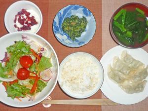 ご飯,餃子,サラダ,ほうれん草の胡麻和え,ほうれん草のみそ汁,クランベリー入りヨーグルト