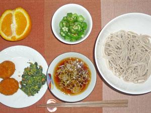 蕎麦,メンチカツ,ほうれん草の胡麻和え,オクラのおひたし,オレンジ