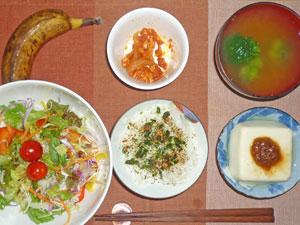 ふりかけご飯,豆腐の肉味噌がけ,サラダ,鶏と玉ねぎのトマトソース煮込み,ブロッコリーのみそ汁,バナナ