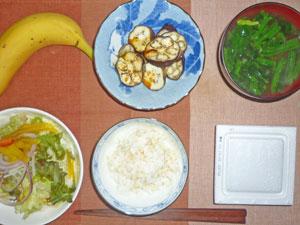 納豆ご飯,サラダ,焼きナス,ほうれん草のみそ汁,バナナ