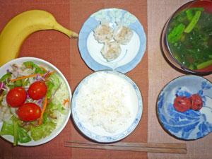 ご飯,梅干し,シュウマイ,サラダ,みそ汁,バナナ