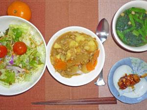カレーライス,サラダ,焼き鳥,ほうれん草のスープ,ミカン