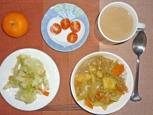 カレーライス,蒸し野菜,トマト,ミカン,チョコ,コーヒー