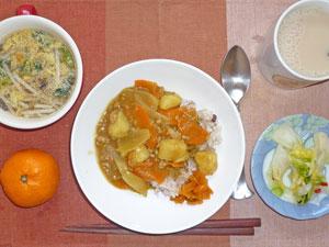 カレーライス,白菜の漬物,福神漬け,もやしの中華スープ,ミカン,ミルクティー