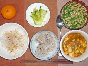 ご飯,豆腐チゲ,大根サラダ,白菜の漬物,ほうれん草と納豆のみそ汁,ミカン