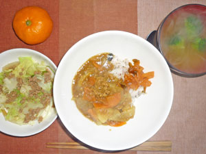 カレーライス,福神漬け,野菜蒸し,ブロッコリーのみそ汁,ミカン