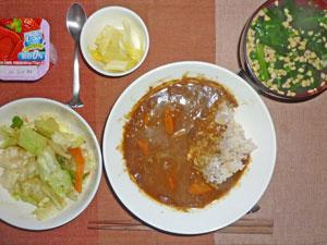 カレーライス,蒸し野菜,白菜の漬物,ほうれん草の納豆汁,ヨーグルト