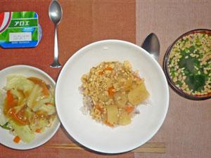 カレーライス,蒸し野菜のあんかけ,ほうれん草入り納豆汁,ヨーグルト
