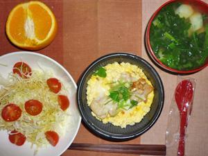 親子丼(小ぶり),サラダ,ブロッコリーと玉ねぎのおみそ汁,オレンジ