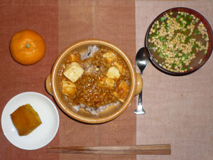 麻婆丼,納豆汁,カボチャの煮つけ,ミカン