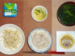 胚芽押麦入り五穀米,納豆,蒸しもやし,漬物,ほうれん草のおみそ汁,ヨーグルト