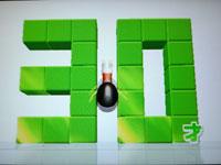 Wii Fit Plus 7月14日のバランス年齢 30歳