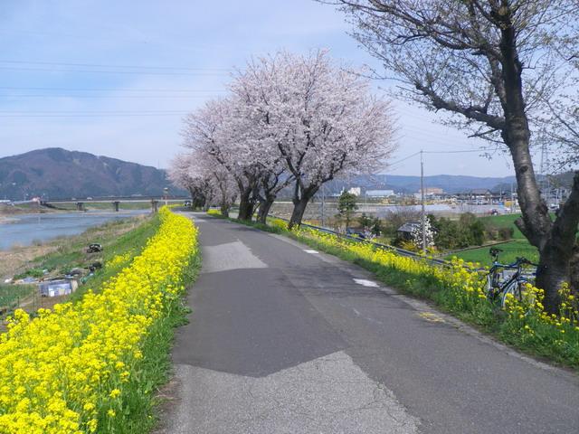 鯖江 日の川