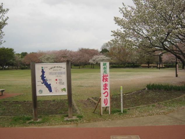 sanuma130406-101.jpg