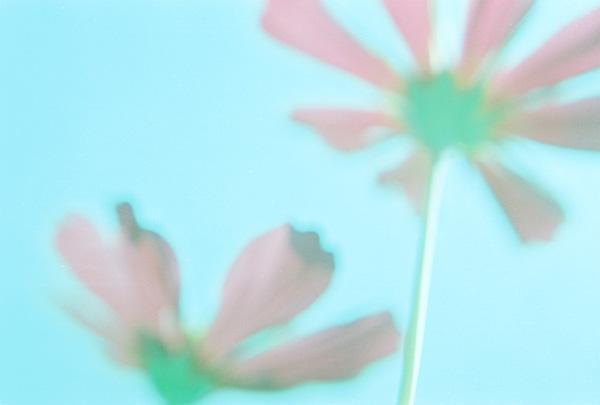 n_04.jpg