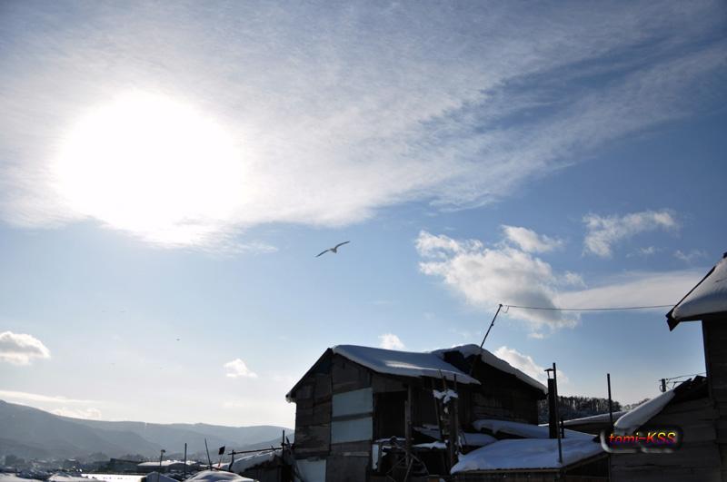 2011-01-092(日)