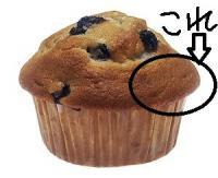 300px-Muffin_NIH[1]_convert_20100820072850