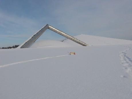 テトラマウンドは、直径2mのステンレス柱の組み合わせによる三角錐(高さ13m)と芝生のマウンドで構成された、シンプルでダイナミックな造形です。