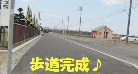 校舎前の歩道