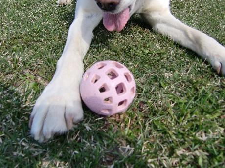 ピンクのボールです。