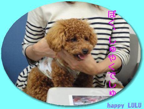 0523+Birthday+026_convert_20100526095510.jpg