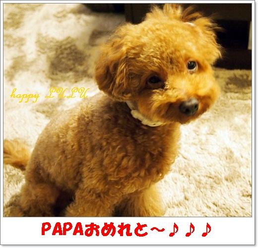 PA310539.jpg