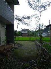 IMGP1162.jpg