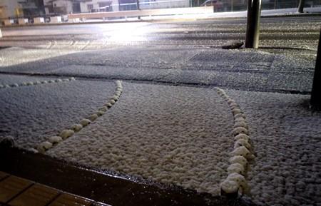 今年の積雪は初だね border=