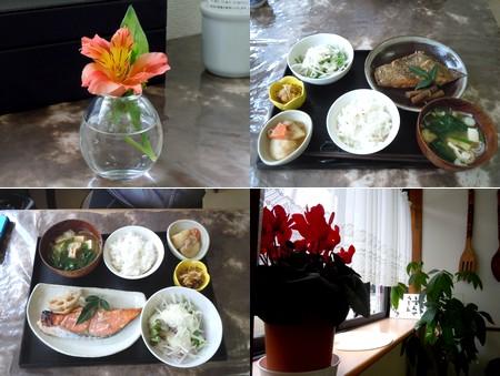 ベリカフェ(小川町)