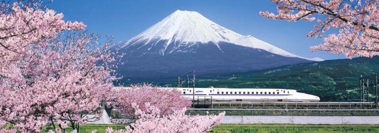 新幹線さくら富士山