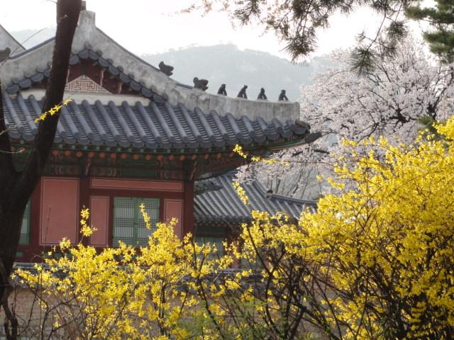 2013年4月17日 景福宮