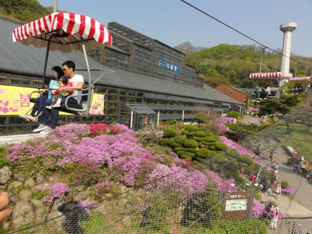 2013年5月4日 ソウル動物園リフト1