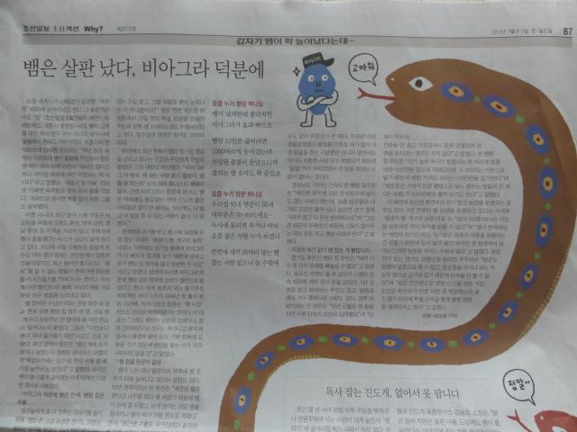 2013年7月6、7日 朝鮮日報記事