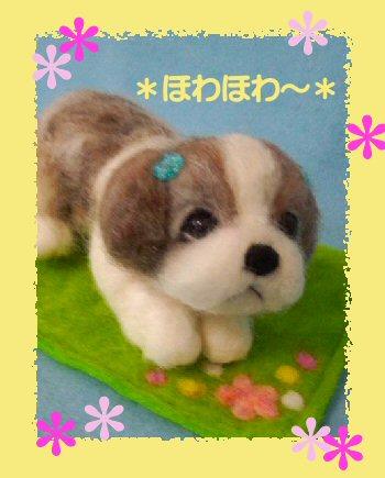 シーズーちゃん御人形3