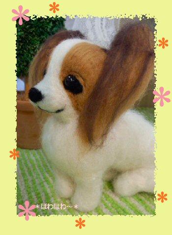 パピヨンちゃん御人形4