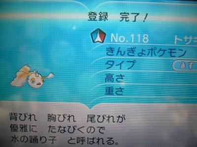 色 トサキント図鑑(X)