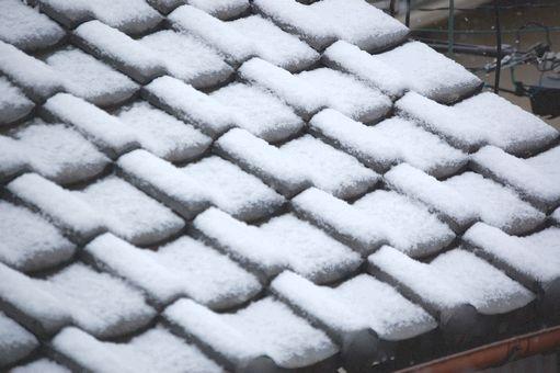 snow 20110211_01s