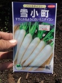 6928yukikomati (4)