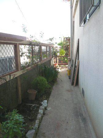 P1150020.jpg
