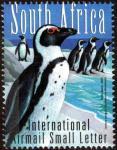 ジャッカス・ペンギン