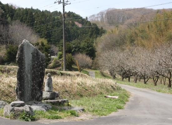 satoyama06.jpg