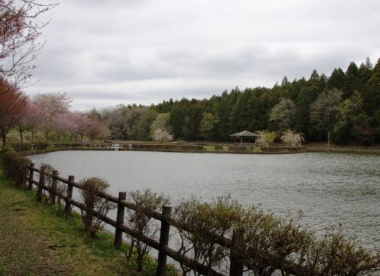 tozawa02.jpg