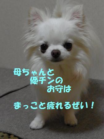 RIMG0478_20110724220829.jpg