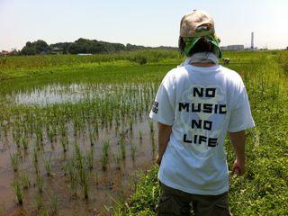 農MUSIC
